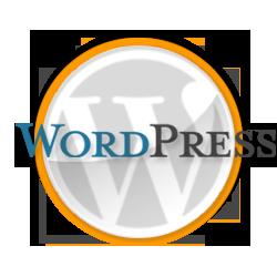 webmaster wordpress brescia verona milano